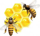 Белкововитаминная добавка для весенней подкормки пчел