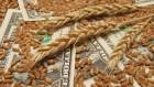 «акупаем пшеницу 1-6 класс с хоз¤йства(с пол¤)