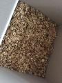 Куплю ядро грецкого ореха ,  качество любое