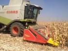 Уборка кукурузы комбайном Claas и жаткой Ziegler Одесская обл.
