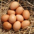яйце кур¤че в≥д виробника (—0, —1, —2)