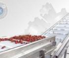 Барботажная моечная машина   для мойки  овощей, фруктов и ягод
