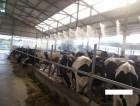 туманообразование и увлажнение в Аграрно промышленном комплексе