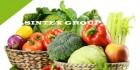 Поставка Ваших продуктов питания в розничные торговые сети