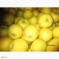 яблука на експорт!