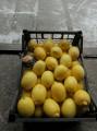 Продам Лимон (Турция)