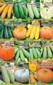 Насіння гарбузів, кабачків, патісонів Семена тыквы ,кабачков патисонов