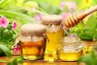 Куплю мёд с антибиотиком дорого