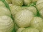 Продаем капусту белокочанную оптом в Ростове
