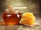 Продам мед оптом с собственной пасеки