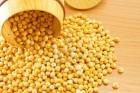 """Компания экспортер  """"Зерно-опт"""" закупает горох желтый"""