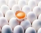 Оптовая продажа самого лучшего куриного яйца