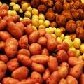 Продается семенной картофель ФХ Чернохатове