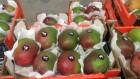 ѕродаем манго из испании