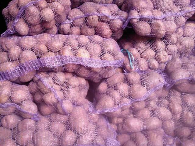 Продажа картофеля, моркови, лука, свеклы и капусты оптом - Изображение 1