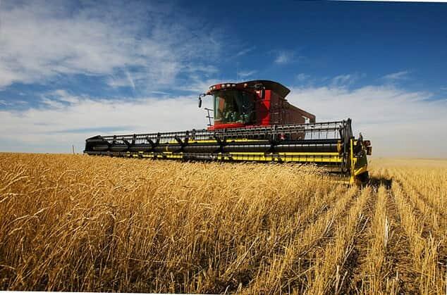 Производим закупку с/х продукции - пшеницу разноклассовую - Изображение 2