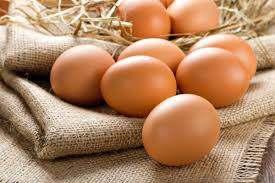 Продаем яйца свежие С0, С1 и яичный порошок на экспорт - Изображение 1