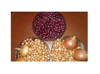 Продажа лука-севок сортов: штутгартен, ред барн, сноубол оптом от 40 кг - Изображение 5